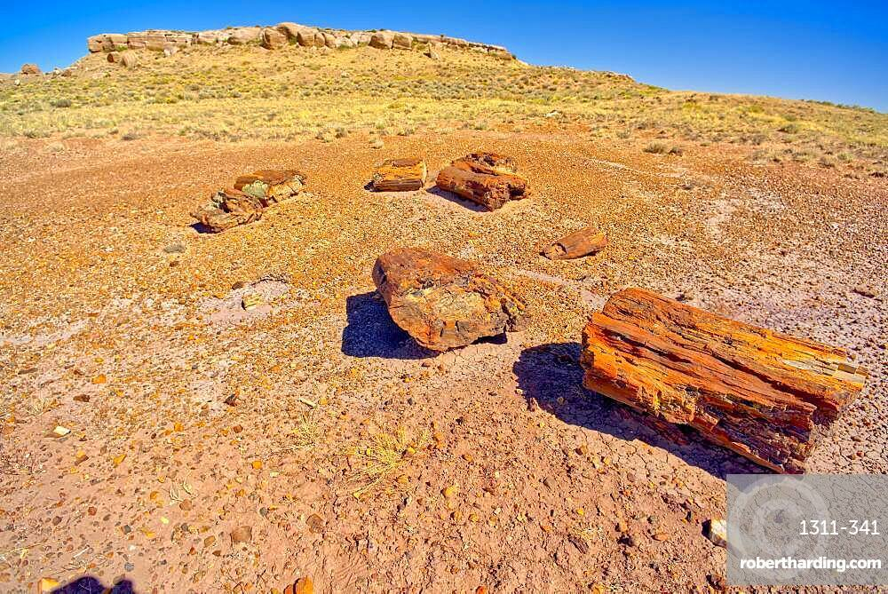 Formation in Petrified Forest National Park Arizona called Agate Mesa, viewed from a group of petrified wood in the foreground.