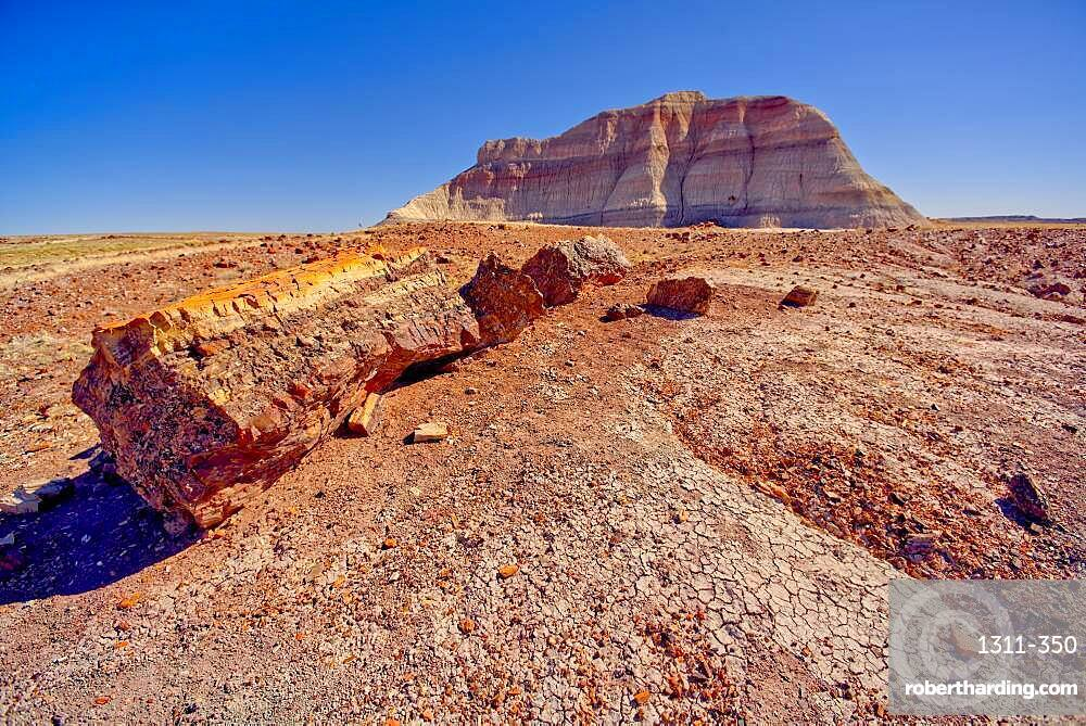 A Bentonite formation in Petrified Forest National Park Arizona near Crystal Forest called the Battleship.