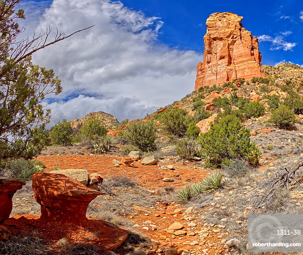 A Sandstone Toadstool near the base of the rock formation called the Rabbit Ears in Sedona, Arizona, United States of America, North America