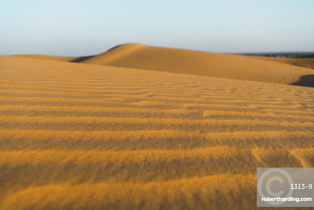 Sand dunes in the Thar Desert, Jaisalmer, Rajasthan, India, Asia