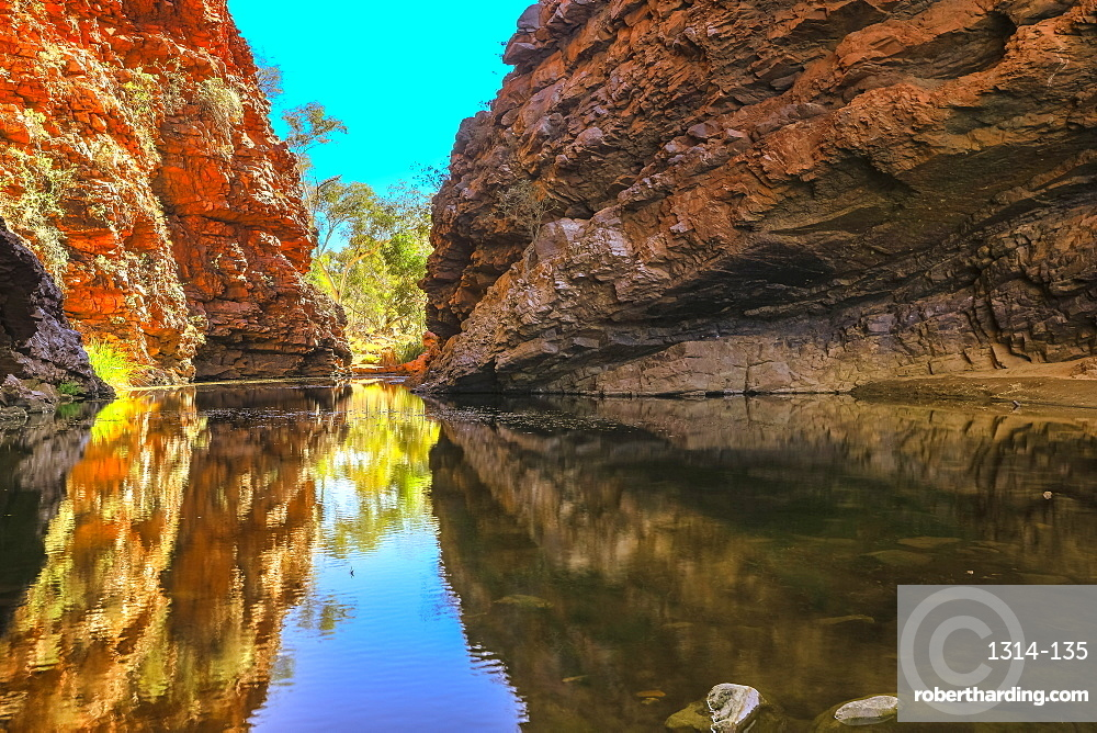Scenic and popular Simpsons Gap and permanent waterhole reflects the cliffs in West MacDonnell Ranges, Northern Territory near Alice Springs on Larapinta Trail in Central Australia. Winter season.