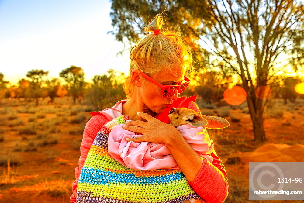 Tourist woman holding ed kissing kangaroo joey at sunset light in Australian outback. Interacting with cute kangaroo orphan. Australian Marsupial in Northern Territory, Central Australia or Red Center
