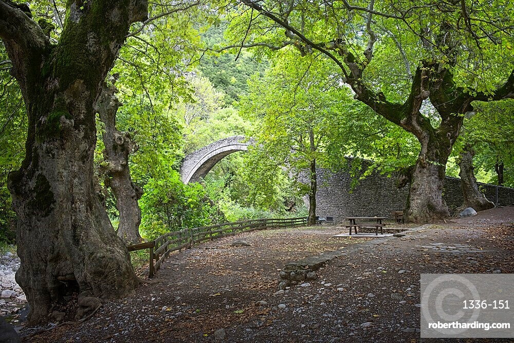 Ancient bridge and trees, Thessaly, Greece, Europe