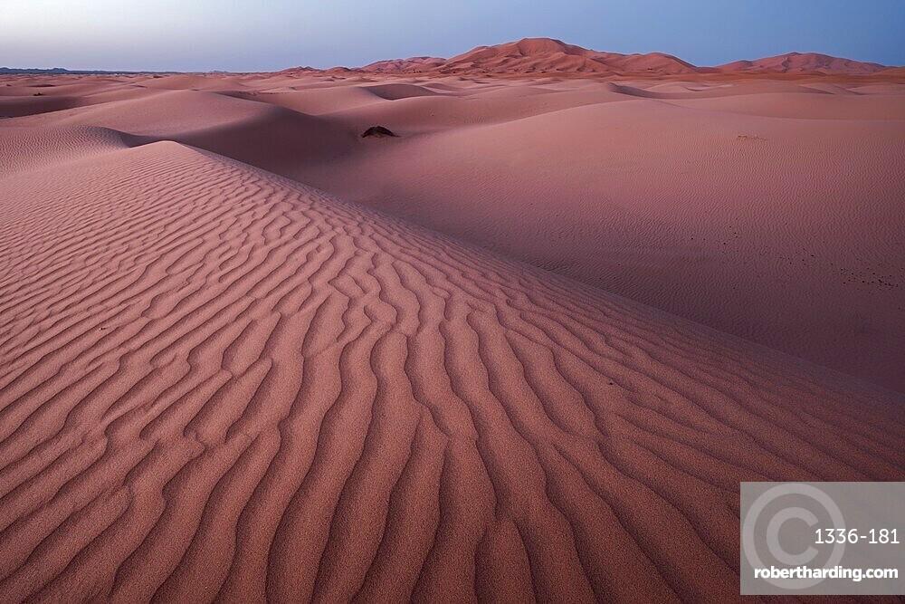 Blue hour on the Sahara Desert sand dune patterns, Erg Chebbi, Merzouga, Morocco, North Africa, Africa