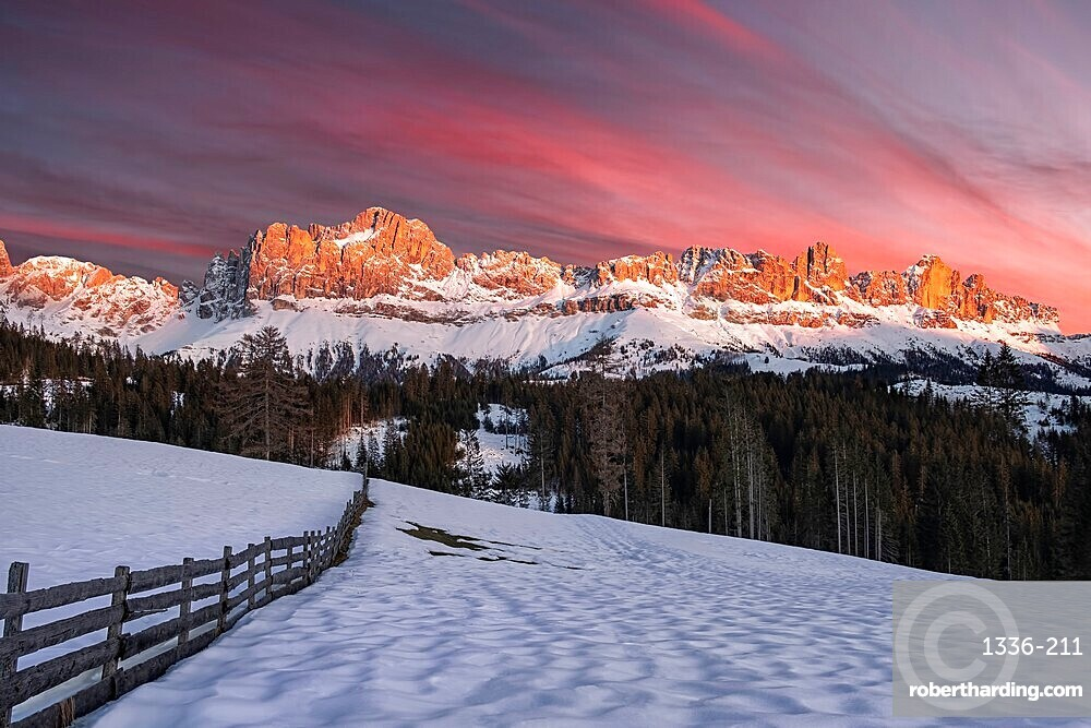 Winter pink sunset named enrosadira on Catinaccio mountain with snow and a wooden fence, Carezza, Bolzano, Italy, Europe