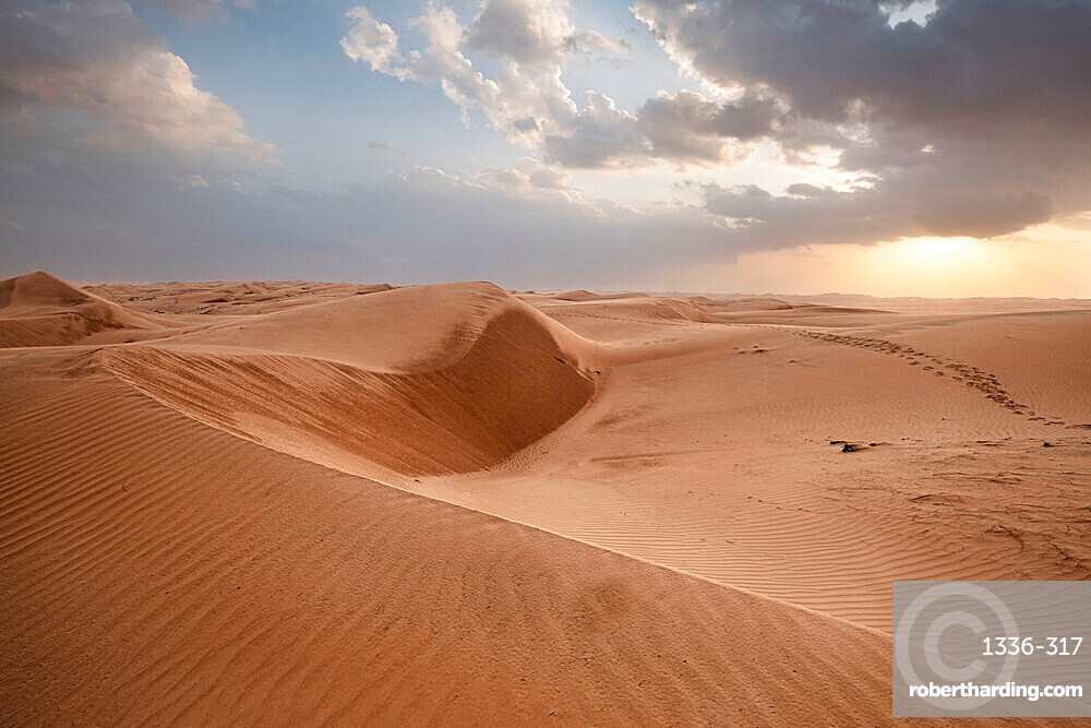 Sand dunes at sunset in the Wahiba Sands desert, Oman, Middle East