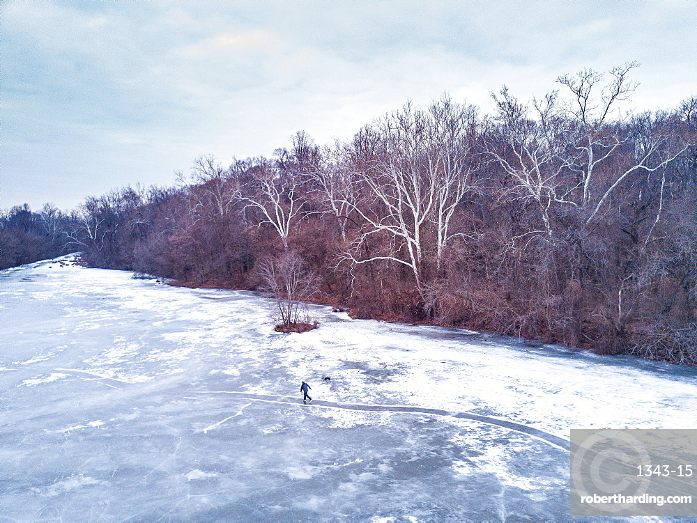A man and his dog ice skates on a path across frozen pond in winter, Maryland, United States of America, North America