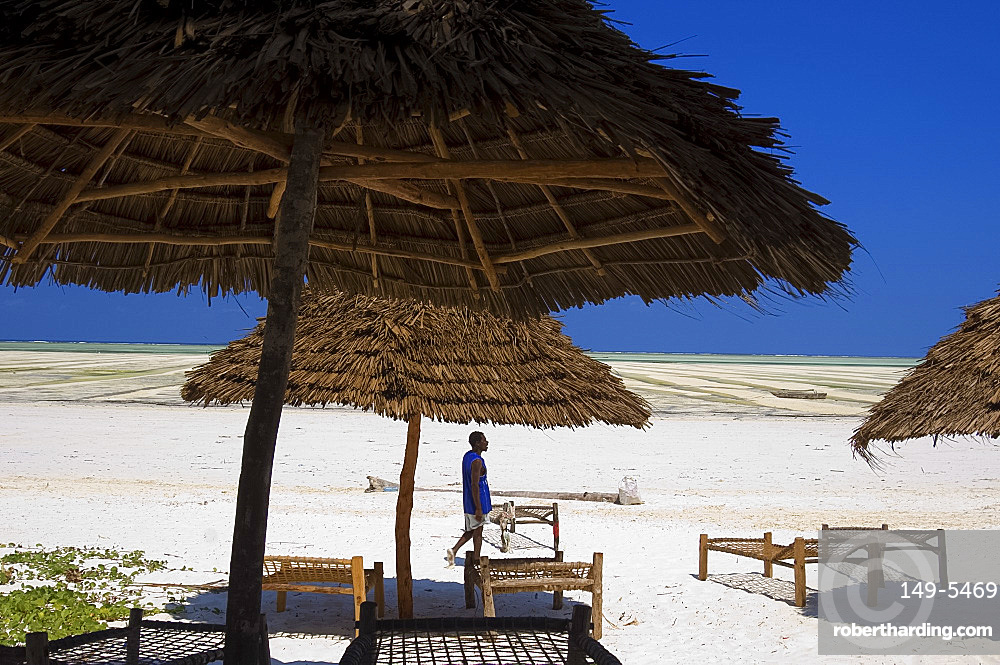 Thatched beach umbrellas and traditional sunbeds made from coconut wood on the beach at Paje, Zanzibar, Tanzania, East Africa, Africa