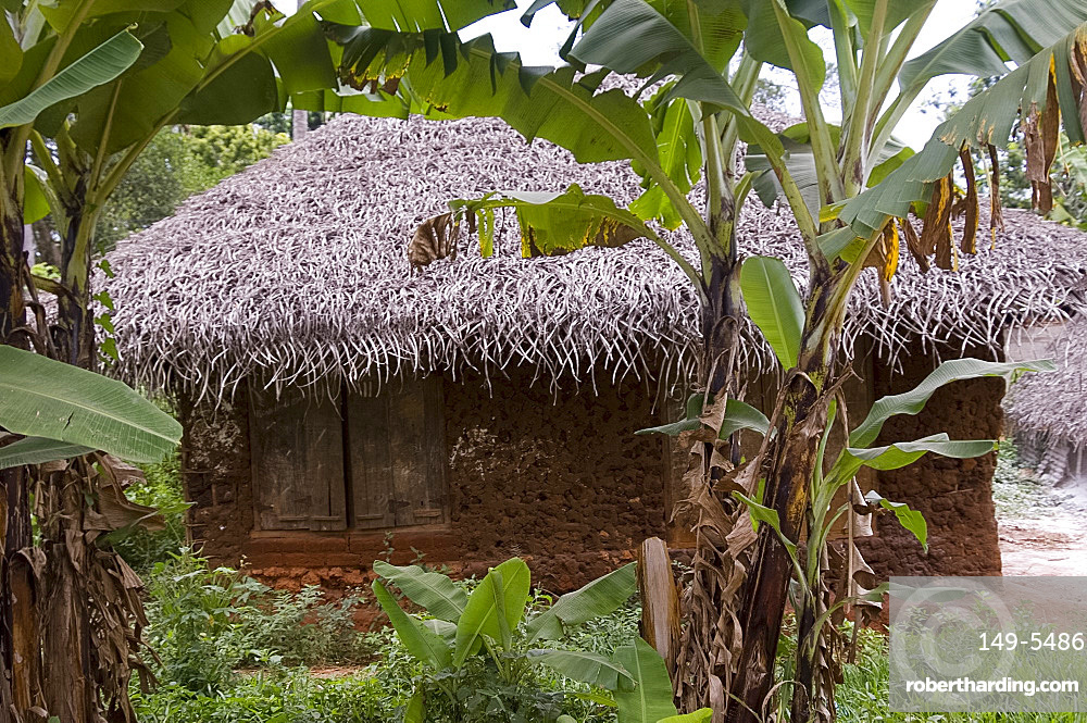 A house with thatched roof, Zanzibar, Tanzania, East Africa, Africa