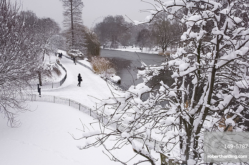 Snow covered trees during a snow storm in St. James's Park, London, England, United Kingdom, Europe
