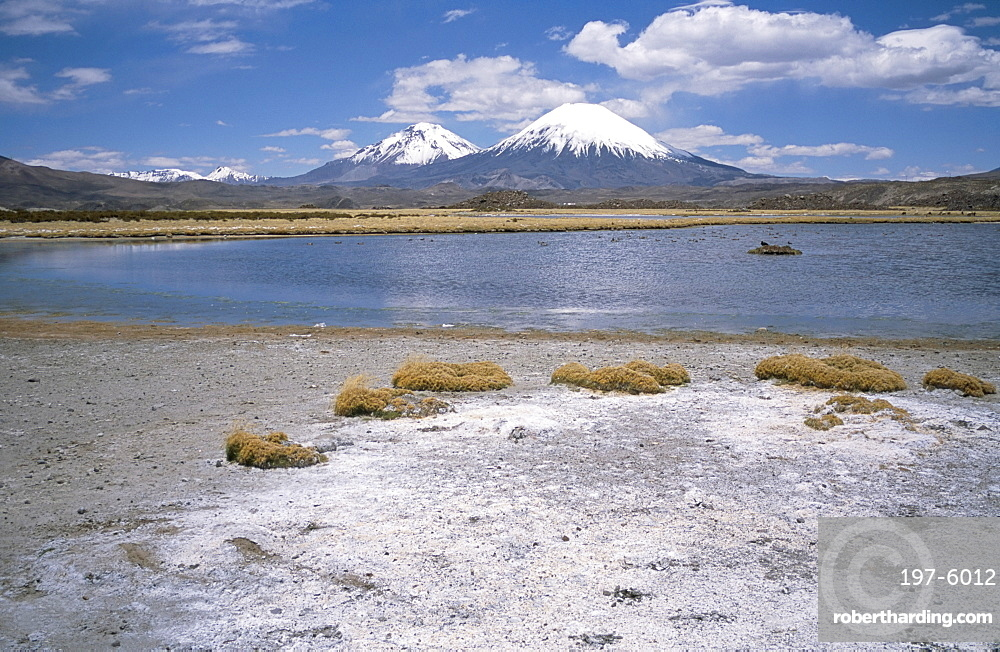 Volcan Parinacota (6330m) on right, Volcan Pomerape (6240m) on left, volcanoes in the Lauca National Park, Andes mountains, Chile, South America