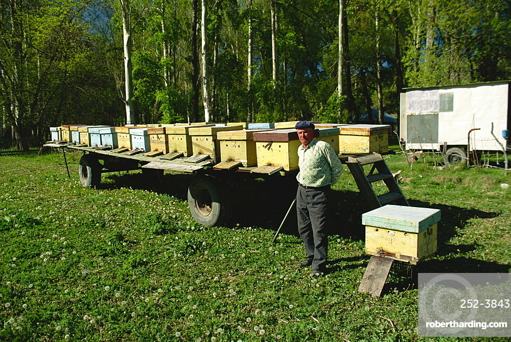 Beekeeping in the Kara Kol Valley, Kirghizstan, Central Asia, Asia