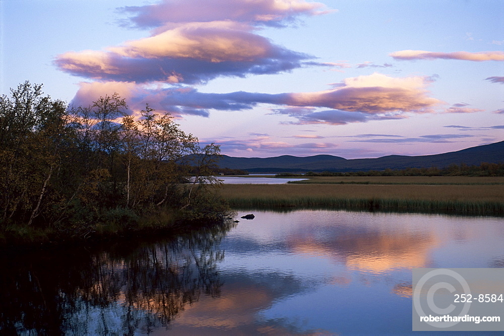 Trees and lake at sunset, Laponia, Lappland, Sweden, Scandinavia, Europe