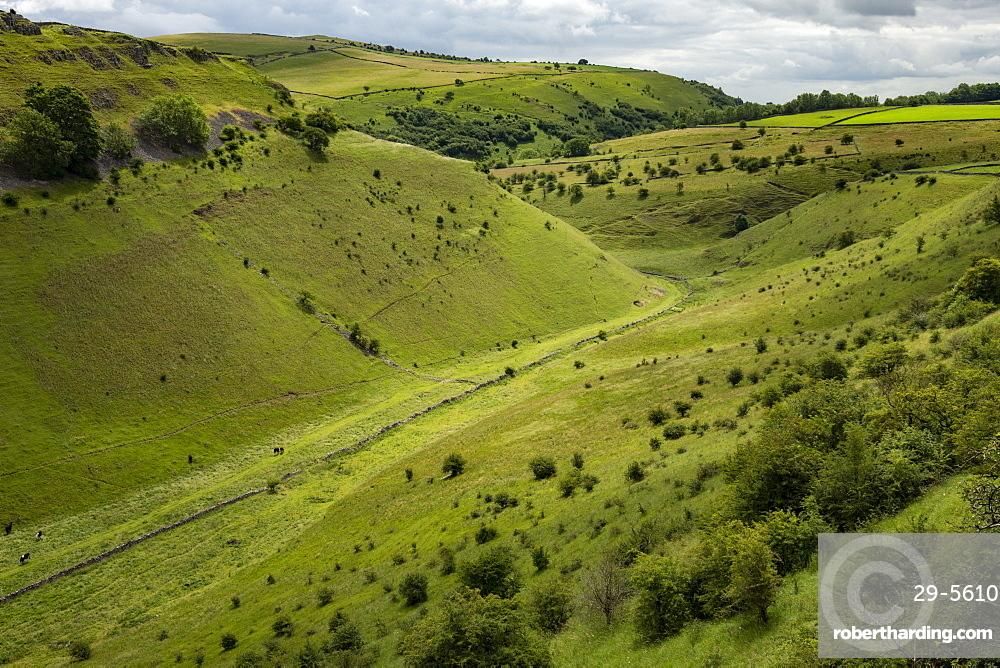 Cressbrook Dale, near Bakewell, Derbyshire, England, United Kingdom, Europe