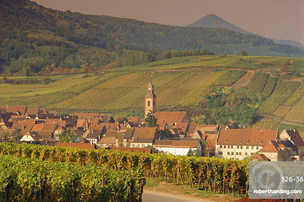 Riquewihr, Alsace, France, Europe