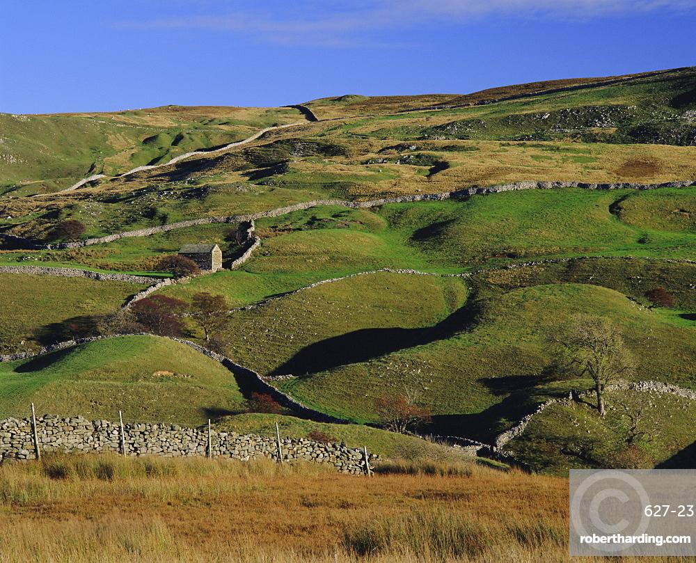 Swaledale, Yorkshire Dales National Park, Yorkshire, England, UK, Europe