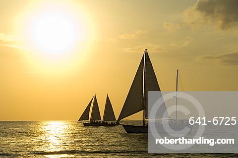 Sailboats at sunset, Key West, Florida, United States of America, North America