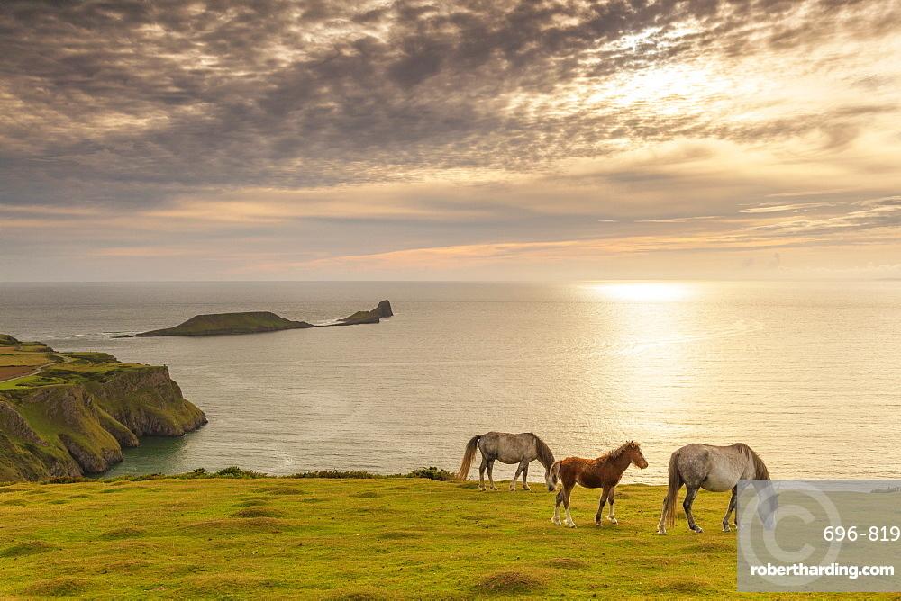Rhossili Bay, Gower, Wales, United Kingdom, Europe