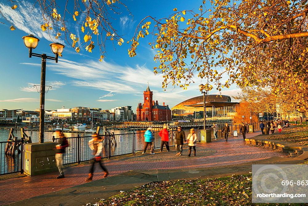 Autumn in Cardiff Bay, Wales, United Kingdom, Europe