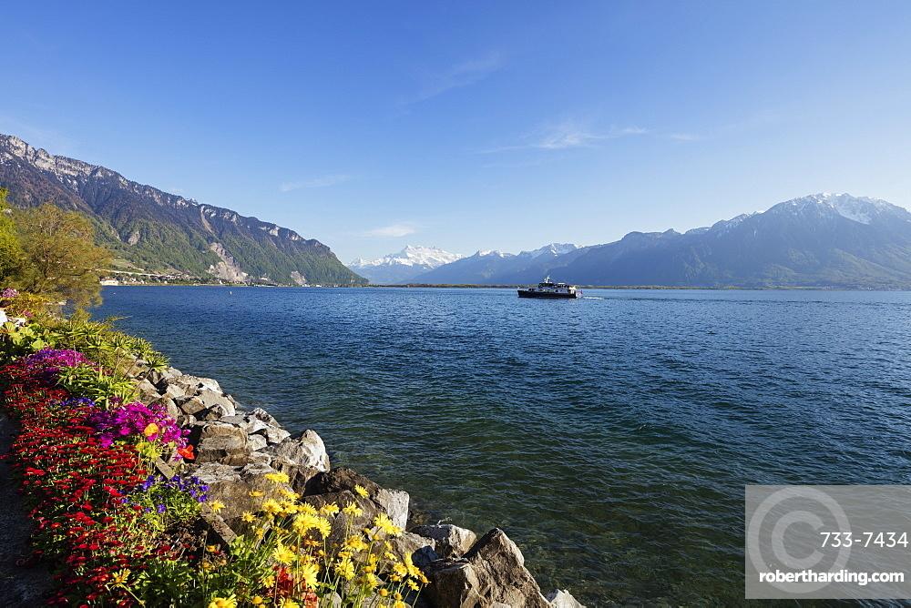 Spring flowers, Lake Geneva (Lac Leman), Montreux, Vaud, Switzerland, Europe