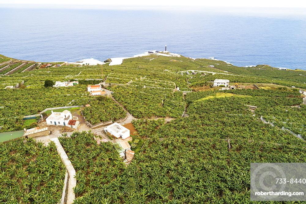 Aerial view of banana plantations. UNESCO Biosphere Site, La Palma, Canary Islands, Spain, Atlantic, Europe
