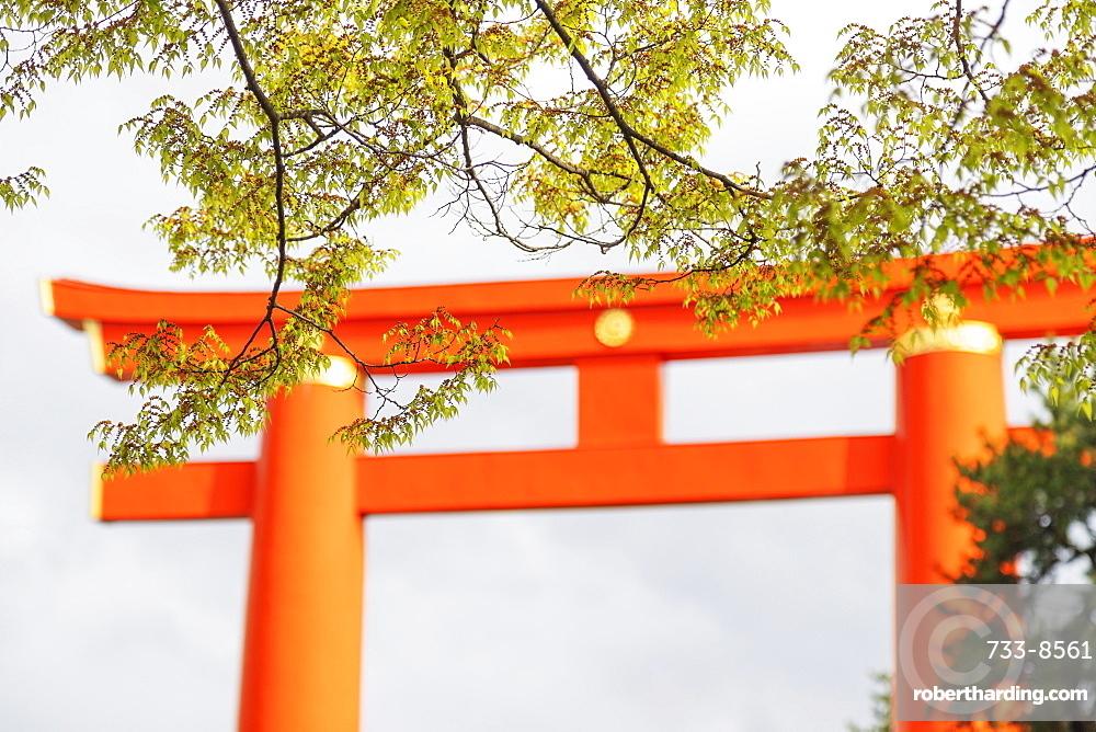 Torii gate at Heian Jingu Shinto shrine, Kyoto, Japan, Asia