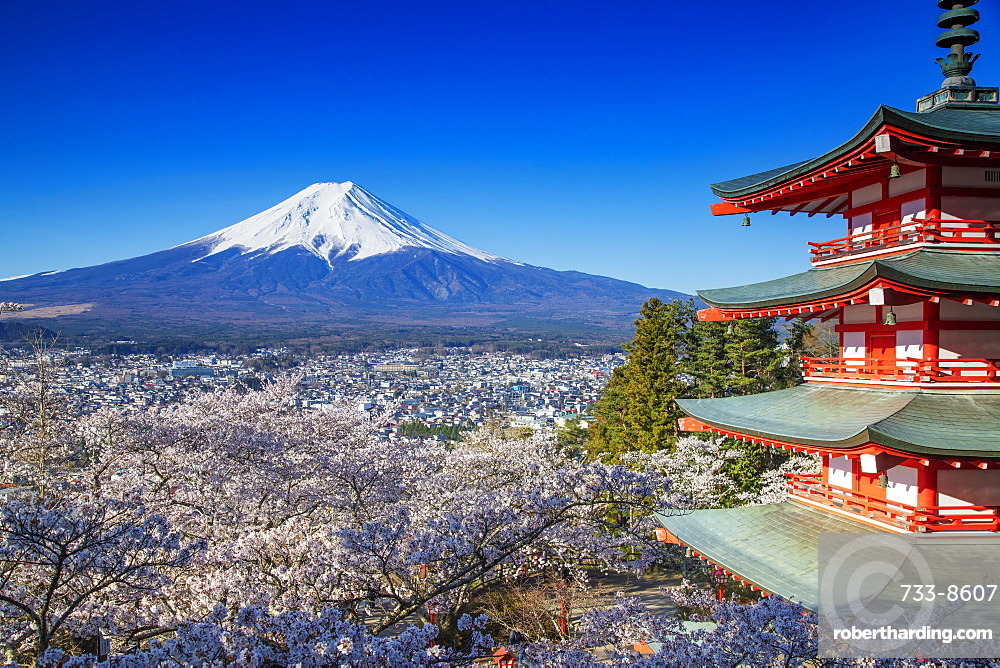 Chureito Pagoda in Arakurayama Sengen Park, and Mount Fuji, 3776m, UNESCO World Heritage Site, Yamanashi Prefecture, Honshu, Japan, Asia