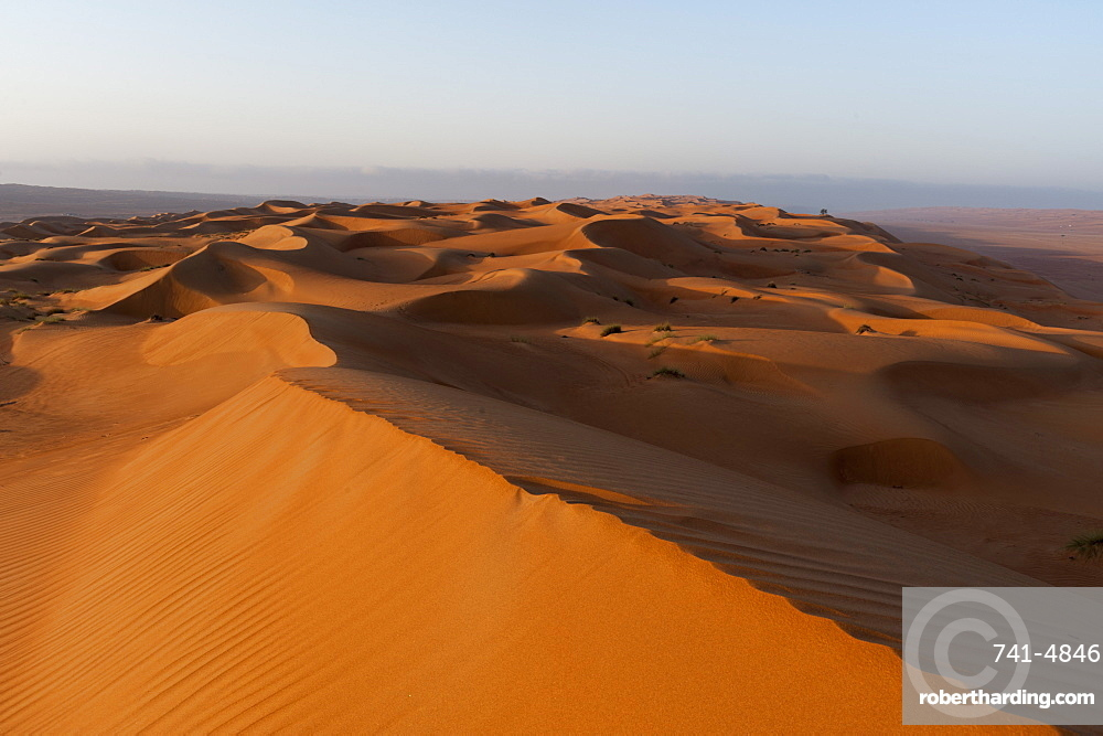 Wahiba Sands desert, Oman, Middle East