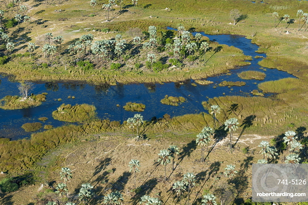 Aerial view of the Okavango Delta, Botswana, Africa