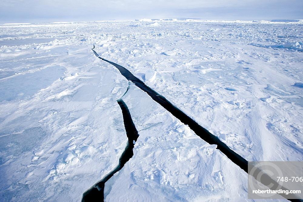 Pack ice, Weddell Sea, Antarctic Peninsula, Antarctica, Polar Regions