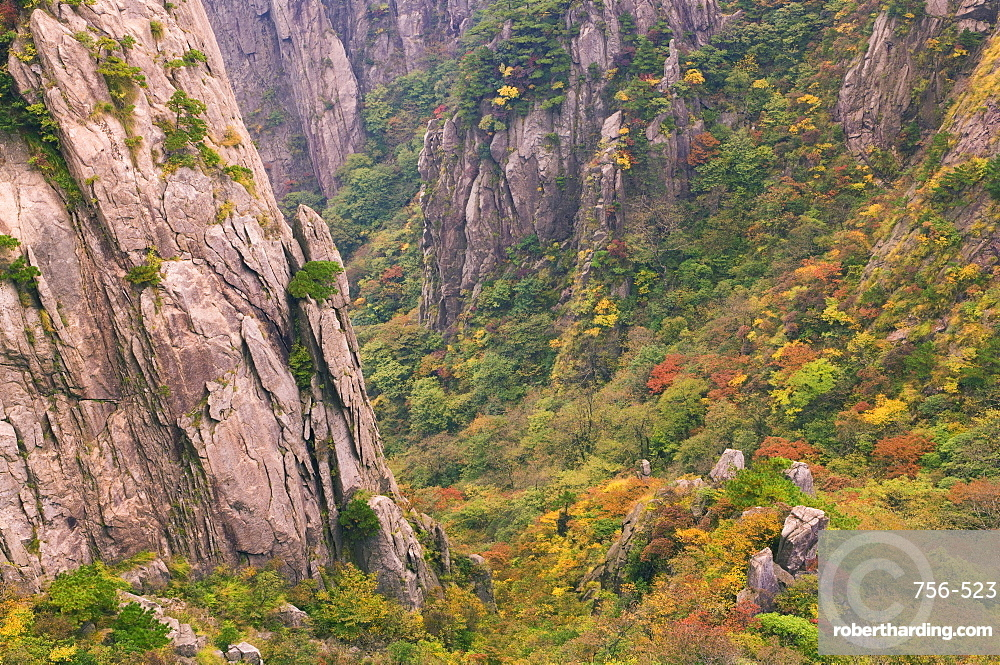 North Sea Scenic Area, Mount Huangshan (Yellow Mountain), Anhui Province, China, Asia
