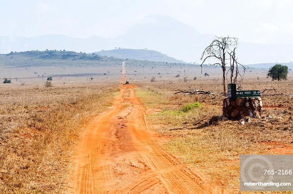 Track in the savannah, Taita Hills Wildlife Sanctuary, Kenya, East Africa, Africa