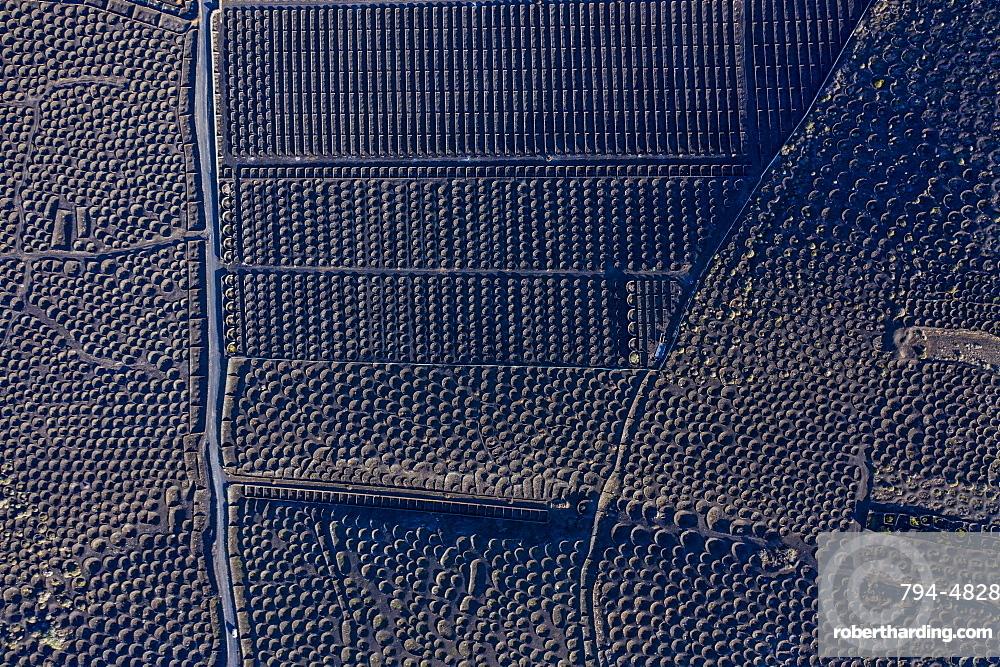 Spain, Canary Islands, Lanzarote, La Geria, aerial view over the Vineyards