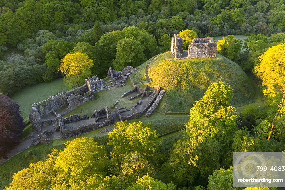 Aerial image showing the ruins of Okehampton Castle on a spring morning, Okehampton, Devon, England, United Kingdom, Europe