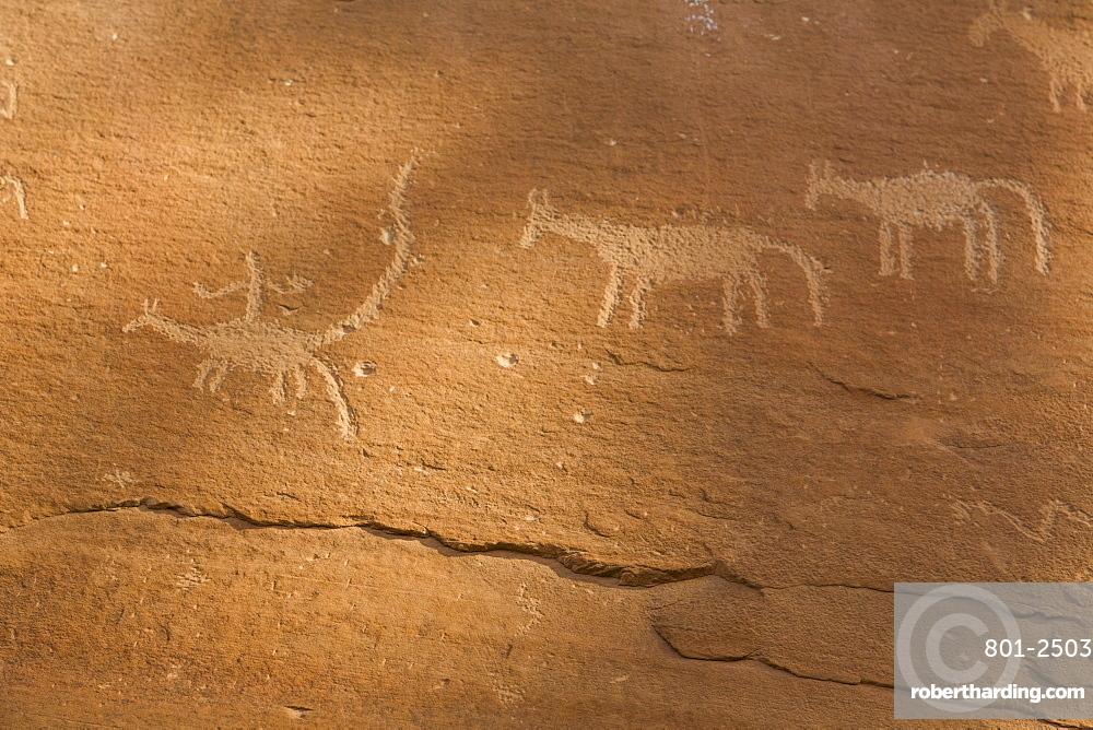 Sand Island Petroglyph Panel, near Bluff, Utah, United States of America, North America