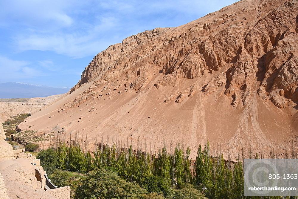 Poplar trees and vineyards growing where water passes through the Taklamakan desert, Xinjiang, China, Asia