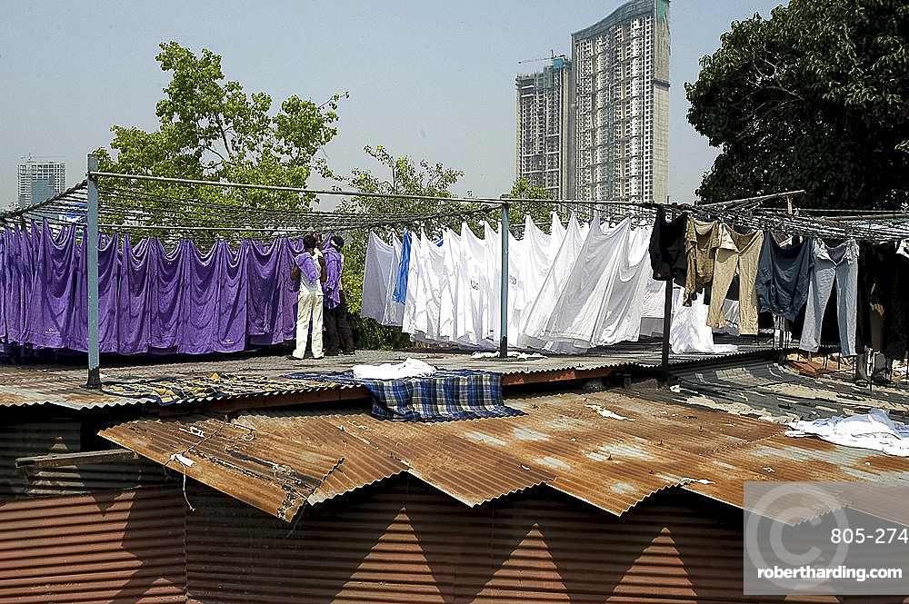Laundrymen (dhobi wallah), sorting laundry by colour on corrugated iron roofs, Mahalaxmi dhobi ghats, Mumbai, India, Asia