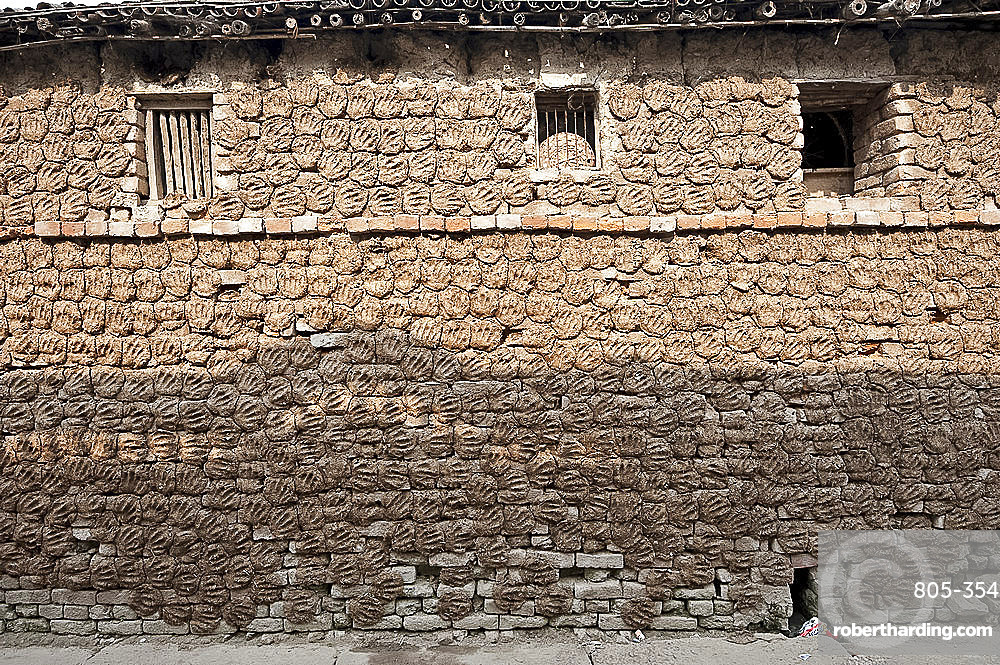 Village house with stone brick walls covered completely with hand shaped dung pats left there to dry in the sun, Sonepur, Bihar, India, Asia