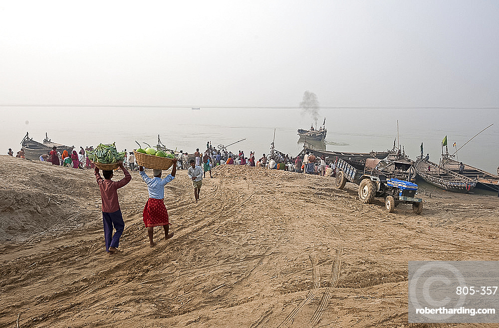 Two men carrying baskets of cauliflower and pumpkins on their heads, down to boats on the River Ganges, Sonepur, Bihar, India, Asia