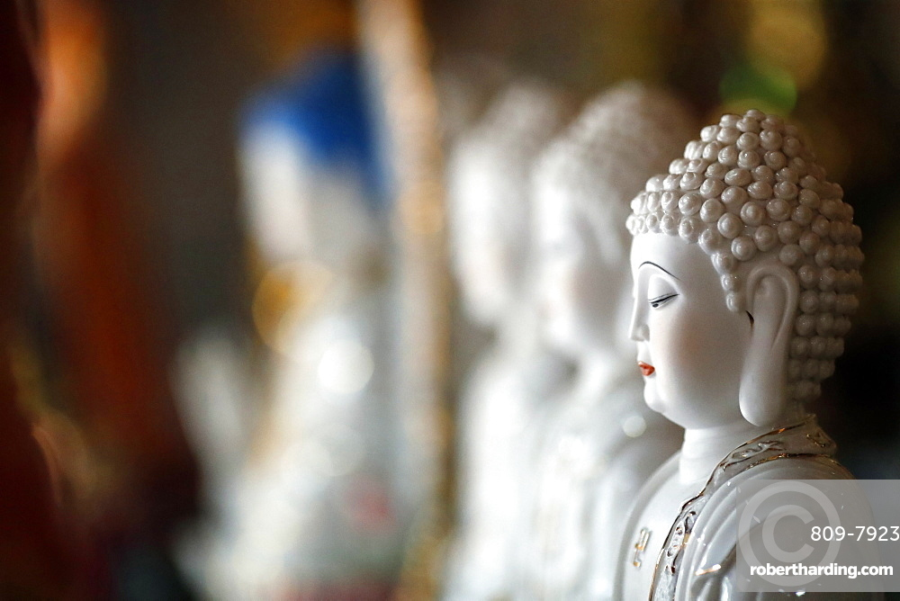 Row of Buddha statues in a Buddhist temple, Ho Chi Minh City, Vietnam, Indochina, Southeast Asia, Asia