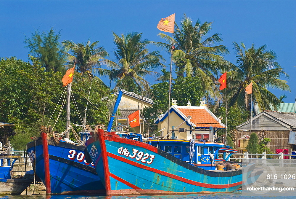 Traditional boats in the habour of Hoi An, Hoi An, Vietnam, Indochina, Southeast Asia, Asia