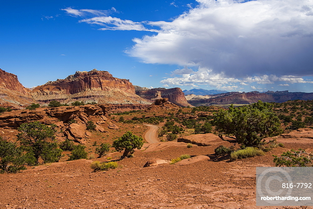 Red sandstone cliffs in the Capitol Reef National Park, Utah, United States of America, North America