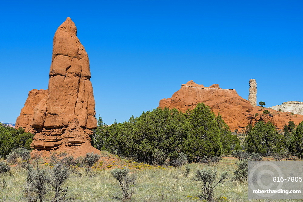Sandstone chimneys in the Kodachrome Basin State Park, Utah, United States of America, North America