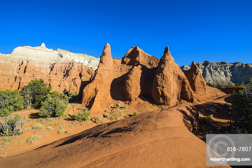 Redrock sandstone formations in the Kodachrome Basin State Park, Utah, United States of America, North America