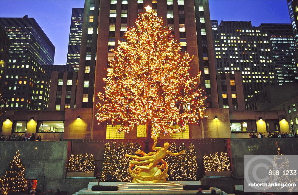 Christmas tree and Statue of Prometheus, Rockefeller Center, New York City, New York, United States of America, North America