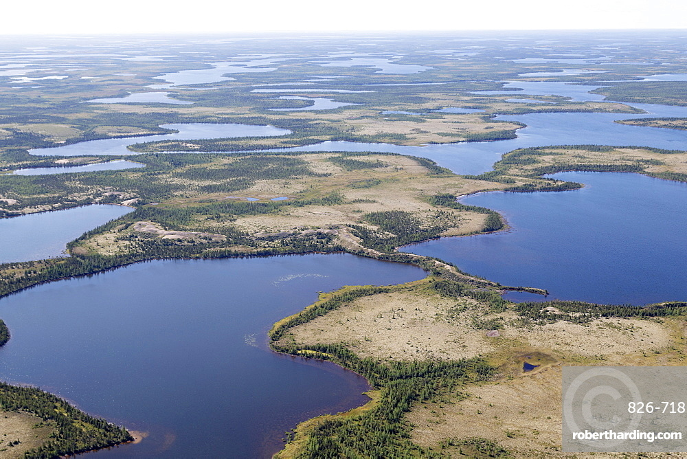 Aerial view of lakes and an esker, a ridge formed by sediment deposited during the last Ice Age, in northern Manitoba, Canada, North America