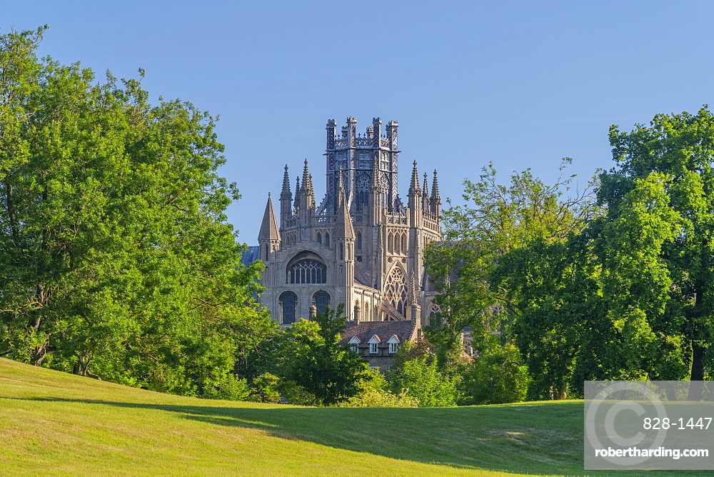 Ely Cathedral, Octagon Lantern Tower viewed from Cherry Hill Park, Ely, Cambridgeshire, England, United Kingdom, Europe
