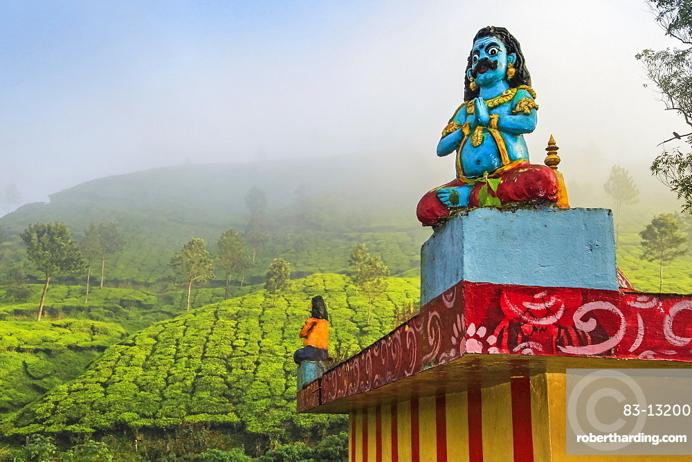Lakshmi tea estate temple devoted to Aravan of the Tamil Kuttantavar Cult, many tea workers are Tamil, Munnar, Kerala, India, Asia