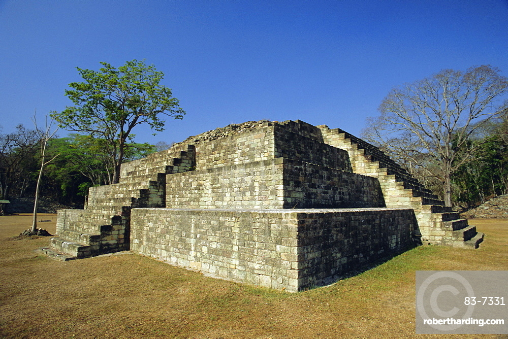 Step pyramid in the great plaza, Mayan archaeological site, Copan, Western Highlands, Honduras, Central America