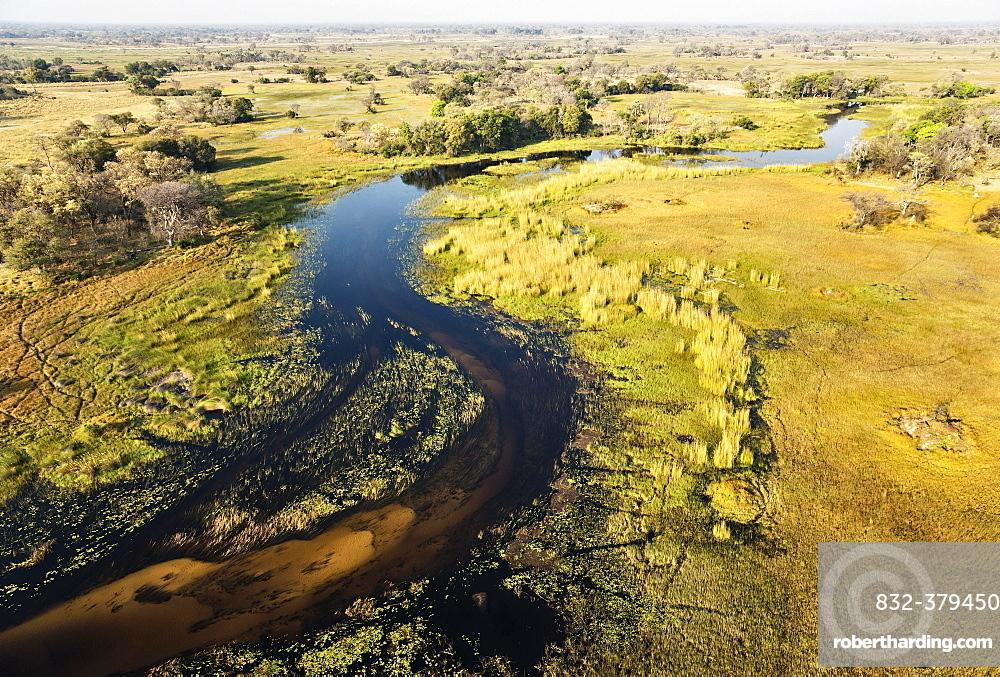 The Gomoti River with its adjoining freshwater marshland, aerial view, Okavango Delta, Botswana, Africa